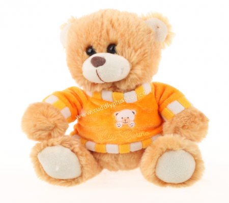 Lovely Teddy Bear with Custom Made T-shirt