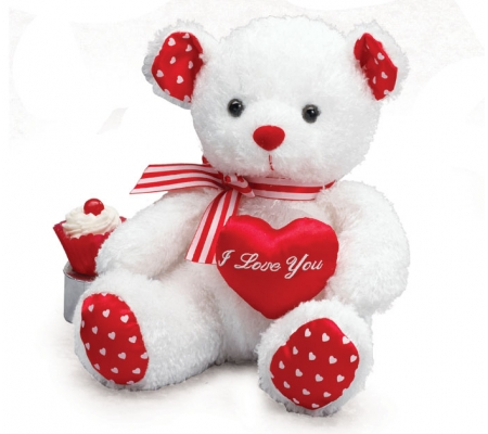 Stuffed Teddy Bear for Valentine